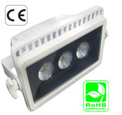 Floodlight 30 Watt LED MCOB 100-240 VAC USA PLUG